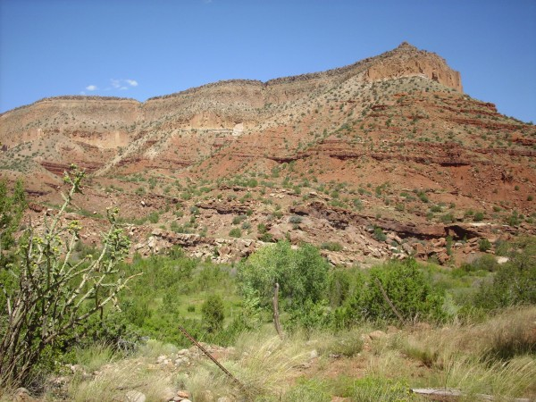 Abo Formation on         Guadalupe Mesa