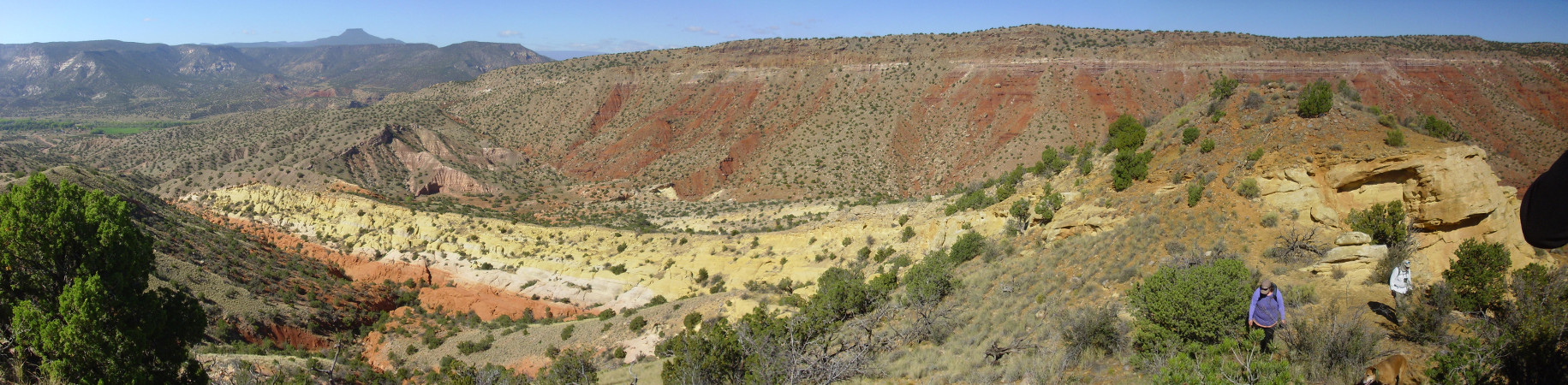 Jurrasic rocks by Red           Wash Canyon.