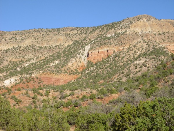 Fault in Permian beds buried under Bandelier Tuff