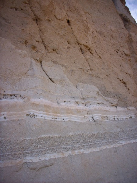 Cerro Toledo exposure