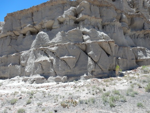 Conjugate           jointing in Abiquiu Formation