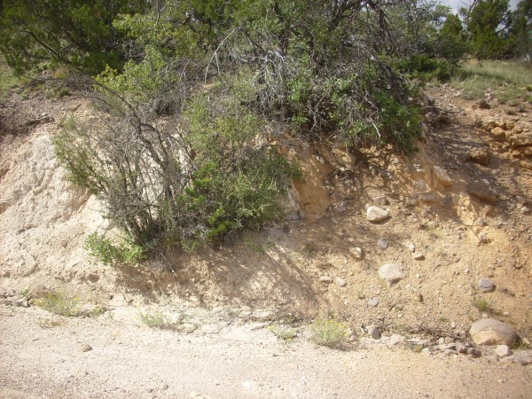 Trace of Camada           Fault west of Veterans Memorial Overlook