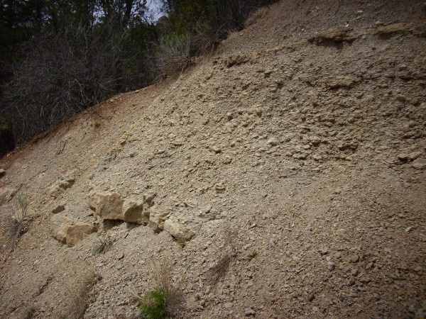 Madera limestone         and limy shale near Hummingbird Music Camp
