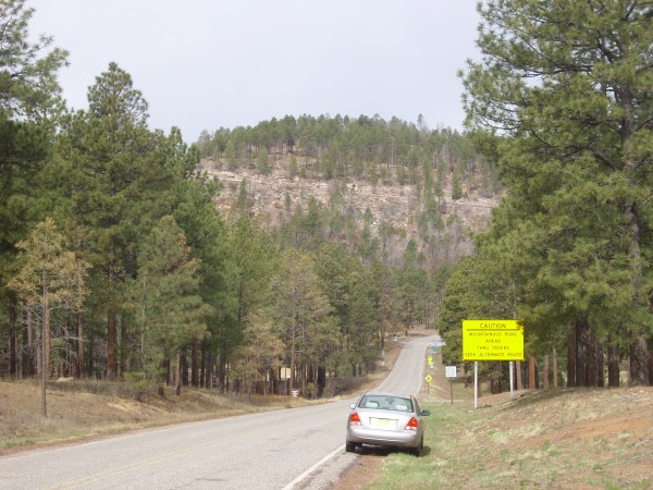 Pajarito Escarpment at           ascent of State Road 4