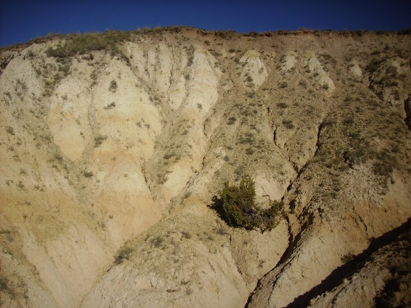 San           Antonio lake deposits